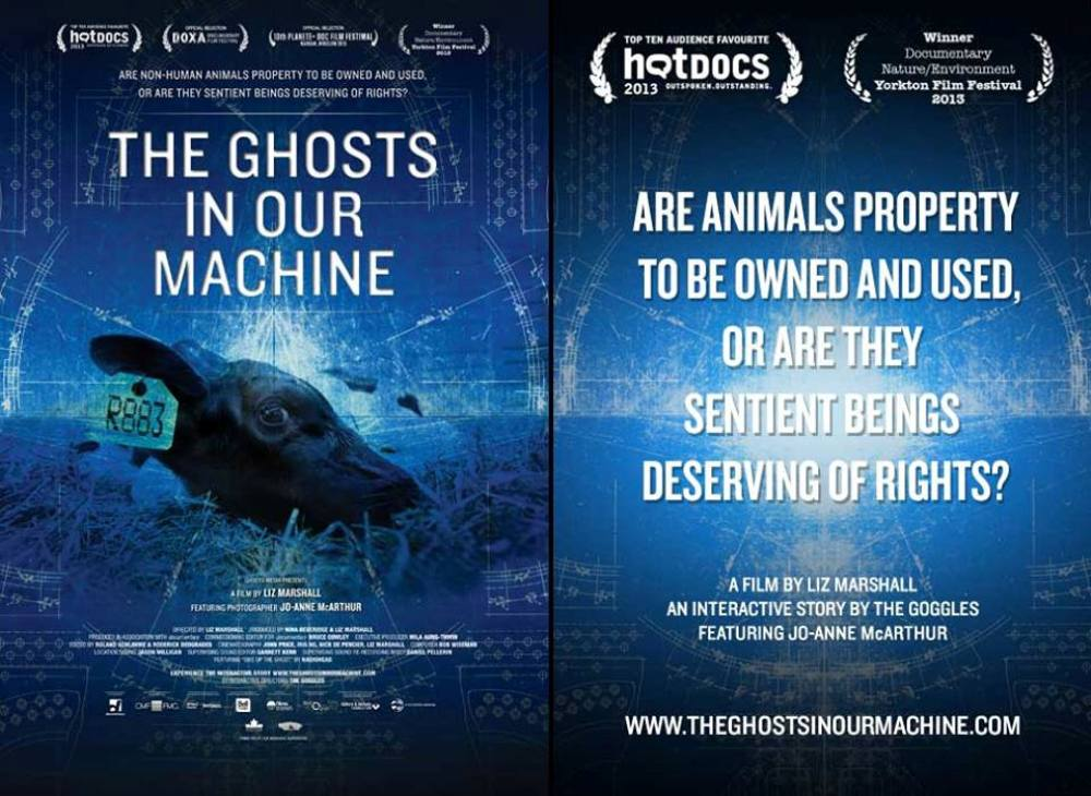 Vegan documentary movie poster for The Ghosts In Our Machine with a dark blue background and a tagged cows head and lots movie quotes